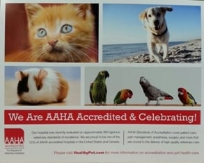 AAHA-accredited-poster-3-26-14-Copy